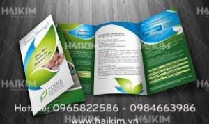 Thiết kế catalogue chuyên nghiệp, in catalogue giá rẻ