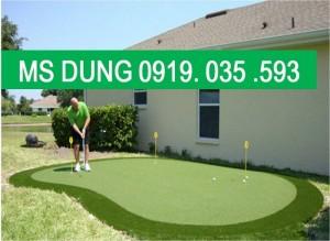 Cung cấp cỏ nhân tạo, cỏ sân bóng cỏ sân vườn trang trí