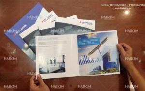 Thiết kế bao bì, logo, catalogue, bộ nhận diện thương hiệu giá rẻ tại Hà Nội