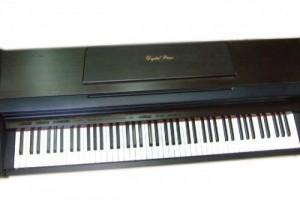 Đàn Piano điện Kawai Pw800