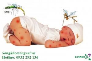Phòng bệnh sốt xuất huyết cấp tốc