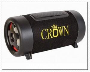 Loa di động Crown cỡ số 4 sử dụng với thẻ nhớ và USB