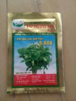 Bên cạnh chúng tôi cung cấp hạt giống các loại rau thông dụng như: Bầu sao, trắng. Khổ qua. Bí đao chanh. Mướp khía. Bí đỏ hạt đậu. Bí đỏ tròn. Đậu đũa. Đậu Cove. Cà Tím. Ớt Hiểm. Dưa Leo. Đậu bắp. Mướp Hương .v.v.. Sp được sx theo nhu cầu rau SẠCH của đa phần mọi người, tỉ lệ nảy mầm tốt, mong được ủng hộ ! Lh: 0934165528 a.Đồng để dc tư vấn.