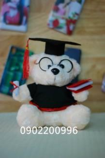 Gấu tốt nghiệp lông xù 20cm