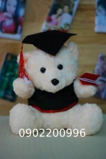 gấu tốt nghiệp đeo kính giá rẻ in logo