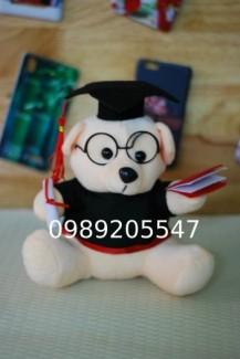 gấu tốt nghiệp giá sỉ