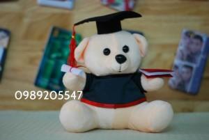 gấu tốt nghiệp, gấu cử nhân đà nẵng