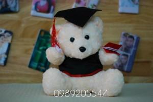 Mua gấu cử nhân tốt nghiệp lông xù 30cm màu kem