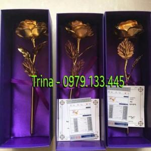Hoa hồng mạ vàng 24k (Miễn phí giao hàng toàn quốc)