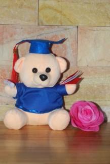 Gấu cử nhân tốt nghiệp 30cm màu kem