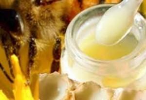 Sữa Ong Chúa Tây Nguyên (ĐăkLăk) 100% Nguyên Chất.