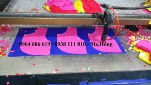 Máy laser 1610 cắt vải công nghiệp