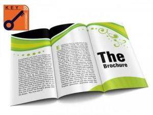 Thiết kế brochure sáng tạo, độc, lạ và bắt mắt