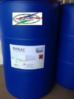 Cung cấp Yucca nguyên liệu (dạng bột & nước) xuất xứ Mỹ, Mexico, nguyên liệu hấp thu khí độc trong nao nuôi tôm cá.