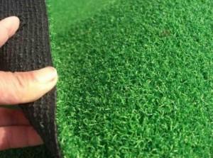 Thanh lý cỏ sân vườn, cỏ bóng đá, cỏ golf các loại