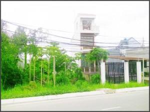 Cần sang gấp lô đất 300m2 mặt tiền đường Tân...