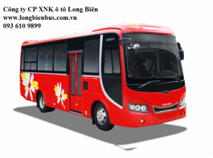 Xe khách 34-39 chỗ Hyundai tracomeco,  Hyundai đô thành, Hyundai Đồng vàng