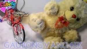 Gấu bông giá rẻ- gấu vàng cute