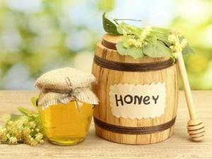 Cung cấp mật ong rừng mật ong nguyên chất trên toàn quốc