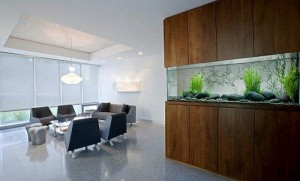 Bể cá thuộc Thủy giúp cân bằng Hỏa khí trong nhà.