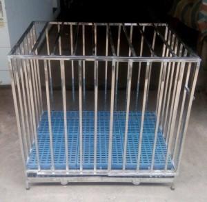Chuồng Chó Inoc Xuất Khẩu KT946491