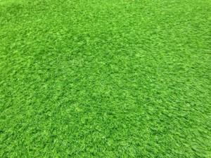 Dọn kho thanh lý các loại cỏ nhân tạo