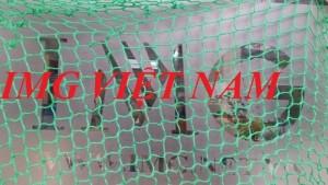 Lưới bao đựng hàng, chống rơi