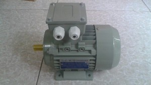 Động cơ điện hai cấp tốc độ, 1 pha, 3 pha , rô to lồng sóc , rô to dây quấn công suất nhỏ