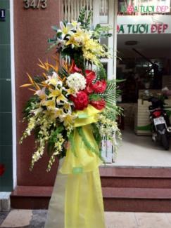 Hoa tươi chúc mừng - KT077