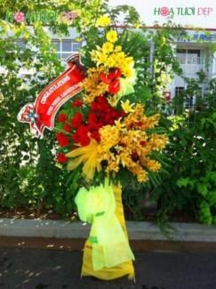 Hoa chúc mừng độc, rẻ - KT076