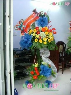 Hoa Khai Trương - KT048