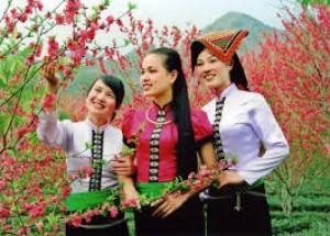Tour du lịch Làng Văn Hóa Các Dân Tộc Việt Nam Đồng Mô 1 ngày giá rẻ 2015
