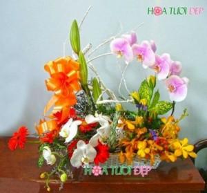 Hoa mừng sinh nhật - GSN010