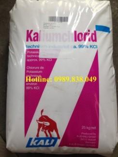 Kali clorua - Potassium Chloride - KCl - 塩化カリウム - 칼륨 염화물 -  氯化钾 dùng trong y tế, thức ăn chăn nuôi