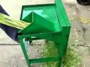 Máy thái rau thái chuối nguyên cây cho chăn nuôi