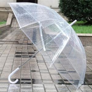 Ô dù trong suốt màu trắng