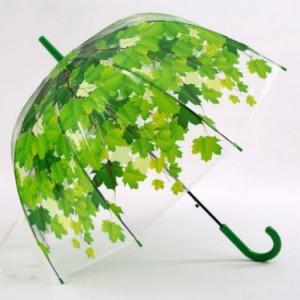 Ô dù trong suốt hoa văn 3d màu xanh lá