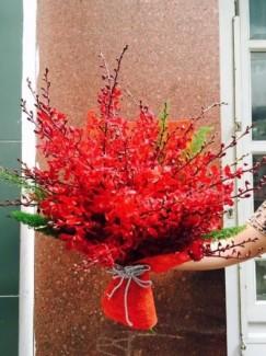 Hoa chúc mừng đơn giản mà cực đẹp - CM133