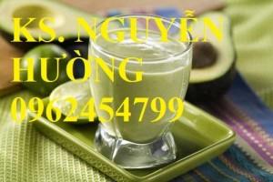Chuyên cung cấp giống cây bơ sáp uy tín, chất lượng