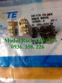 Modul Rack Cat6,Patch cord, dây nhảy AMP Cat5, Patch cord Cat6 UTP chính hãng