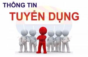 Tuyển Nvvp, Thư Ký Văn Phòng, Hành Chánh Nhân...