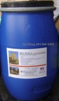 Yucca, Yuca, chất xử lý nước, chất xử lý ao hồ, chất diệt tảo, chất hấp thu khí độc, chất xử lý đáy ao