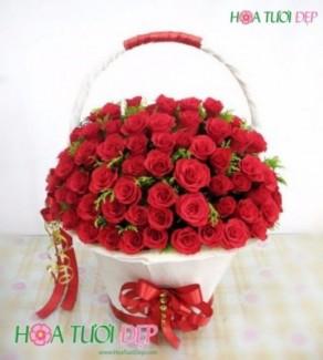Hoa Tình Yêu Đẹp Nhất - TY048