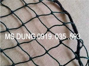 Lưới tennis, lưới chắn sân tennis, lưới bóng chuyền, lưới bóng rổ, lưới xây dựng