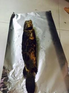 Cá lóc nướng trui ngon