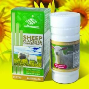 Viên uống trị nám nhau thai cừu sheep placenta