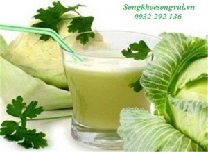 Hỗ trợ điều trị bệnh viêm loét dạ dày, tá tràng bằng rau cải bắp