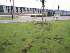Nhượng lô đất mặt tiền đẹp ngay trung tâm...