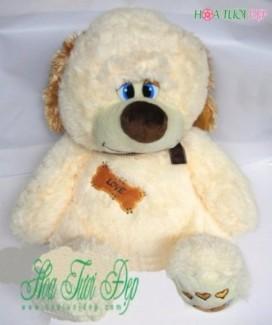 Gấu Bông - GB003