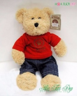 Gấu Bông Đa Dạng Nhiều Màu Sắc - GB002